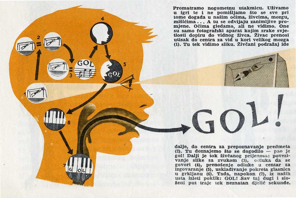 Jugo-enciklopedija: Svijet oko Nas