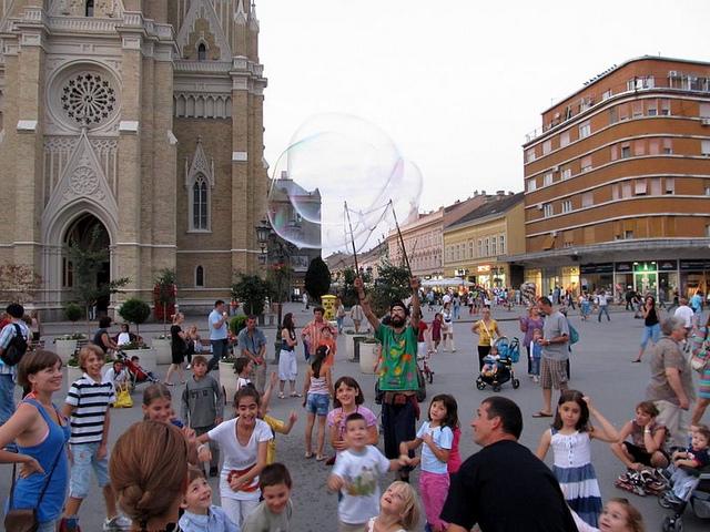 Lepršavi Novi Sad