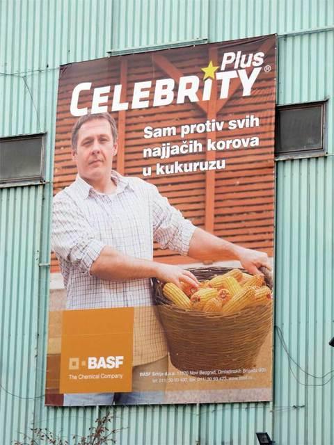 Celebrity Plus