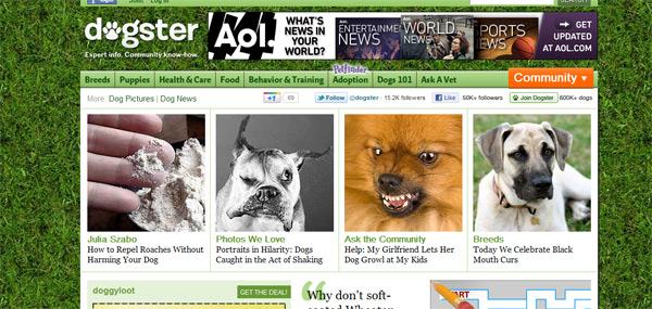 I psi su online – pseća društvena mreža