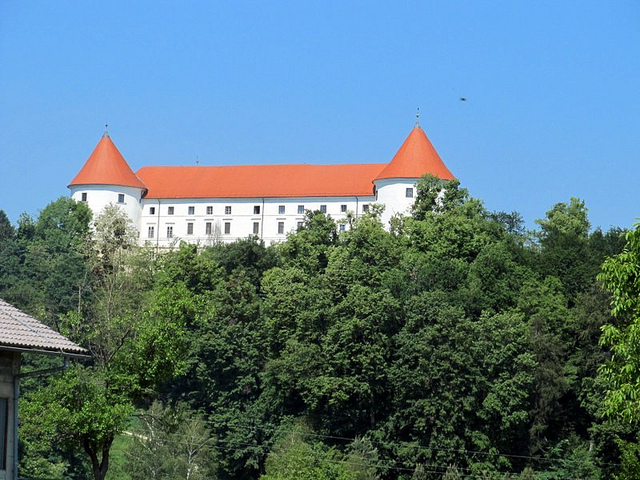 Srednjovekovni dvorac Mokrice