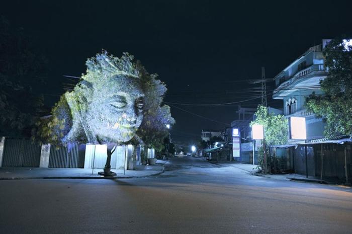 3D projekcije na drveću