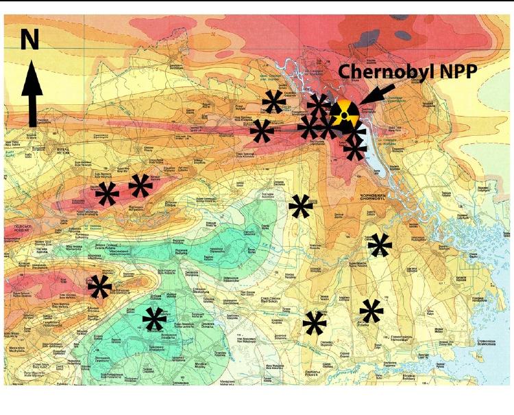 Černobiljsko drveće